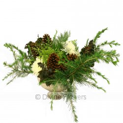 Christmas Foliage Arrangement  Priced from $ 240  Click for more details